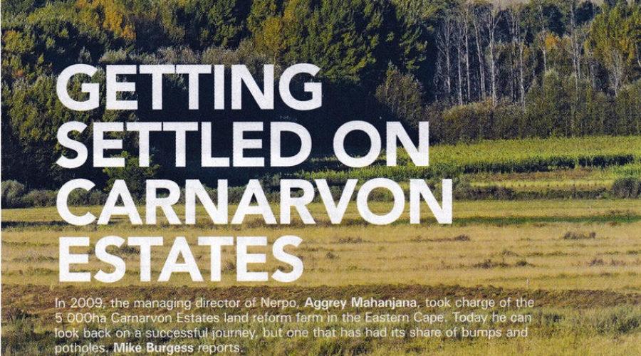 Getting Settled on Carnarvon Estate